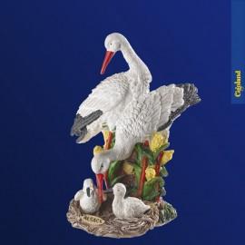 Les cigognes blanches en famille