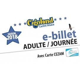 Billet Adulte / Journée / Carte Cezam