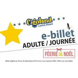 Adult Ticket / Féerie de Noël (Du 26 au 30 décembre 2019 et du 2 au 5 janvier 2020)