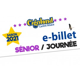 Senior/ Day Ticket